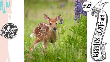Baby deer in wild flowers loose step by step Acrylic April day #27